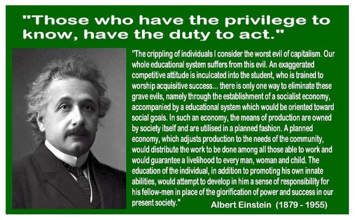 Albert Einstein Quote Education System