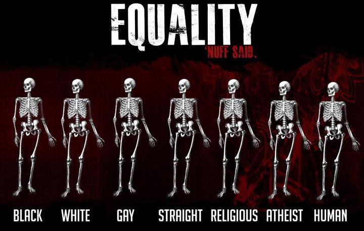 Equality | Ha! Tea 'n' Danger