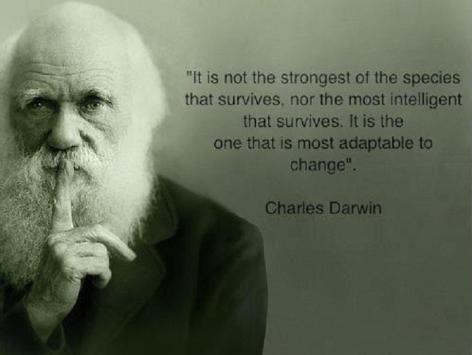 It Is Not The Strongest Of The Species Nor The Most Intelligent That Survives It Is The One That Is Most Adaptable To Change Charles Darwin