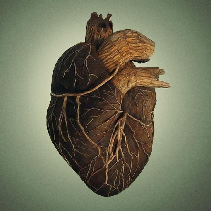 ¿Qué son los Artefactos del Traidor? Tree-root-heart-veins-and-arteries
