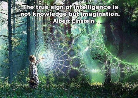 Albert Einstein The True Sign Of
