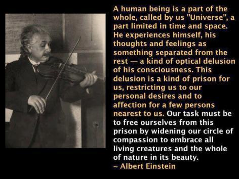 Albert Einstein A Human Being Is