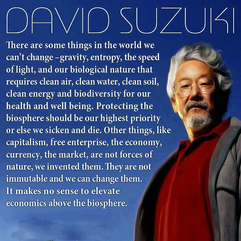 David Suzuki Vegan