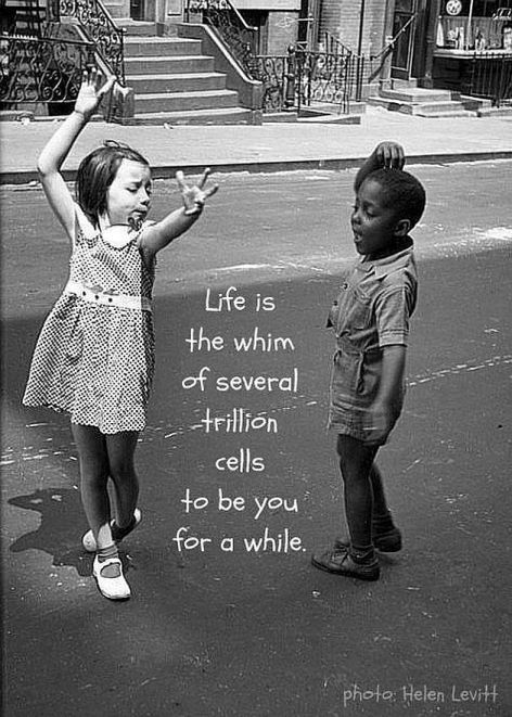 Life Is The Whim Of Several Trillion