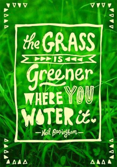 Neil Barringham The Grass Is Greener