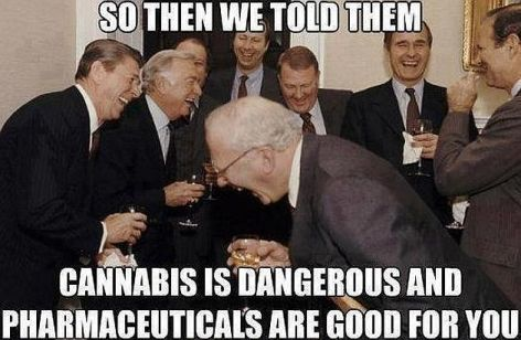 So Then We Told Them Cannabis Is Dangerous And Pharmaceuticals Are Good For You