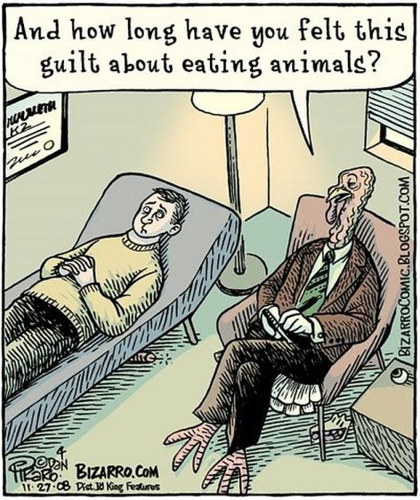 And How Long Have You Felt This Guilt About Eating Animals