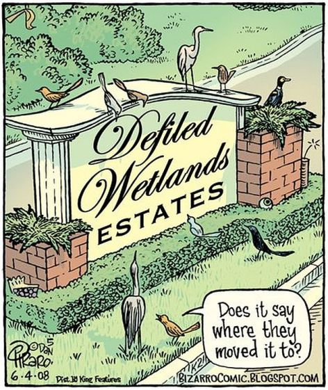 Defiled Wetlands Estates Does It Say Where They Moved It To