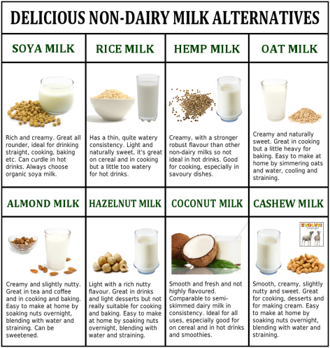 Delicious Non-Dairy Milk Alternatives