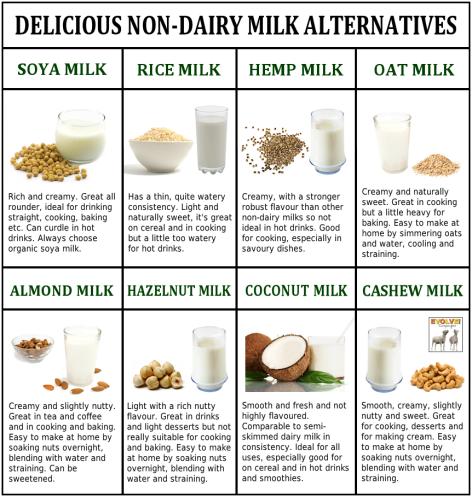 Delicious Non-Dairy Milk Alternatives
