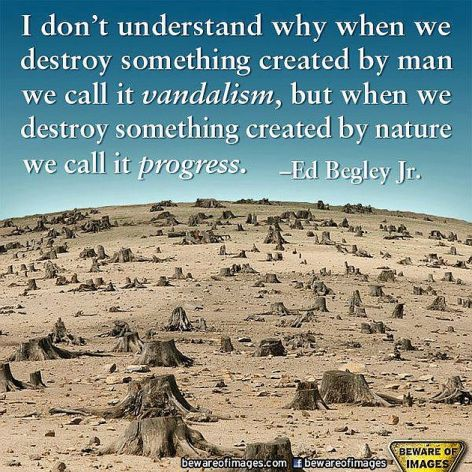 Ed Begley Jr I Don't Understand Why When We Destroy Something Created By Man We Call It Vandalism But When We Destroy Something Created By Nature We Call It Progress