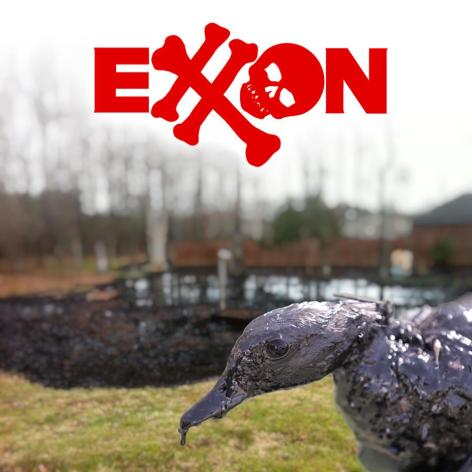 Exxon Oil Covered Duck Spill Arkansas