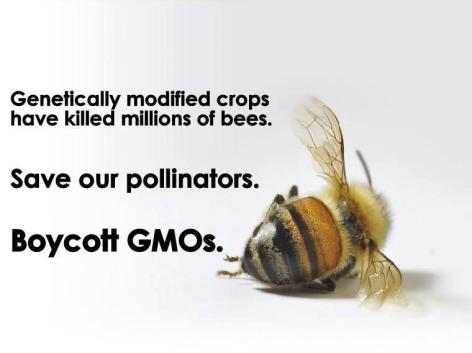 Genetically Modidied Crops Have Killed Millions Of Bees Save Our Pollinators Boycott GMOs
