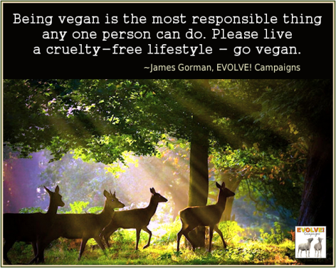 James Gorman Being Vegan Is The Most Responsible Thing Any One Person Can Do Please Live A Cruelty Free Lifestyle