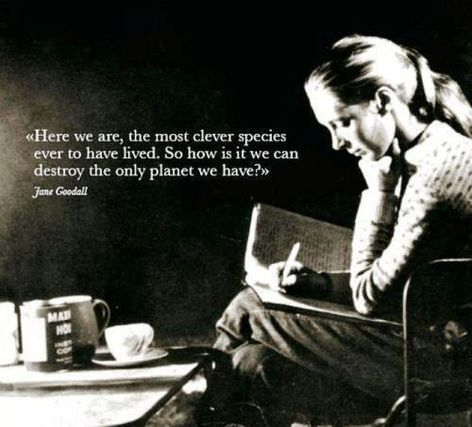 Jane Goodall Here We Are The Most Clever Species Ever To Have Lived So How Is It We Can Destroy The Only Planet We Have