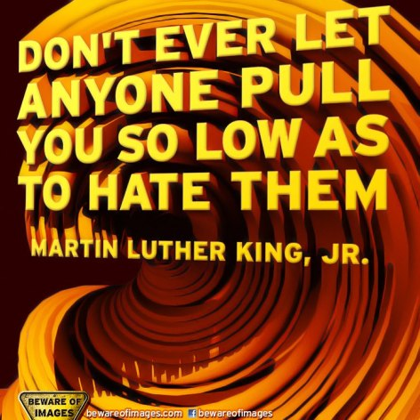 Martin Luther King Jr Don't Ever Let Anyone Pull You So Low As To Hate Them