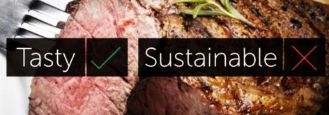 Meat Tasty Yes Sustainable No