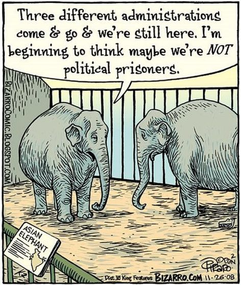 Three Different Administrations Come & Go & We're Still Here I'm Beginning To Think Maybe We're Not Political Prisoners