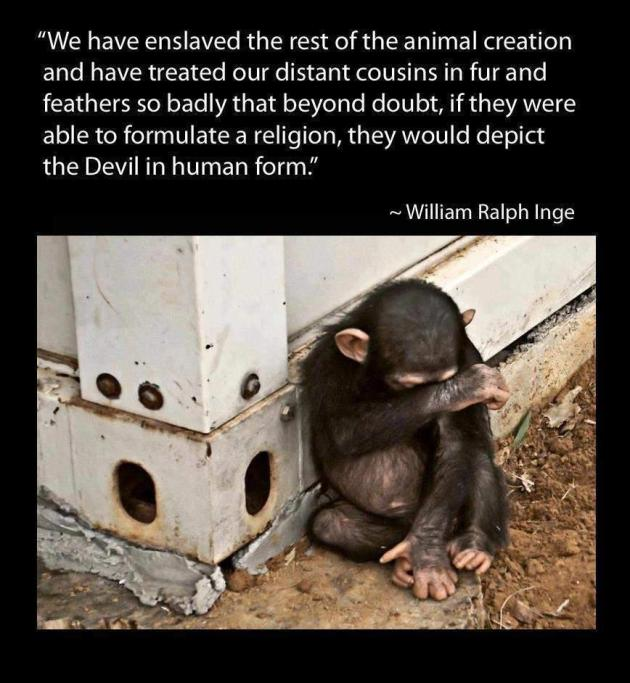 William Ralph Inge We Have Enslaved The Rest Of The Animal Creation