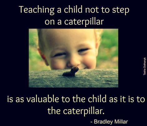Bradley Millar Teaching A Child Not To Step On A Caterpillar