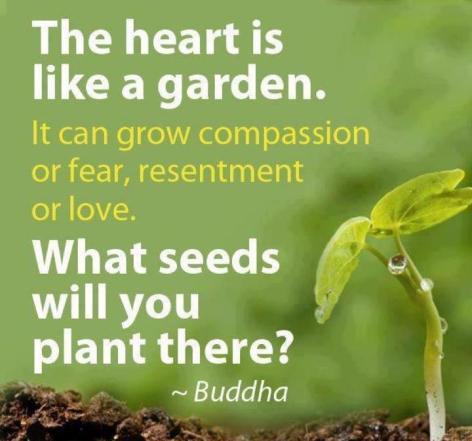 Buddha The Heart Is Like A Garden