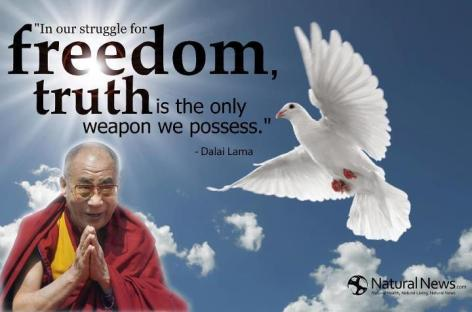 Dalai Lama In Our Struggle For Freedom Truth Is The Only Weapon We Possess
