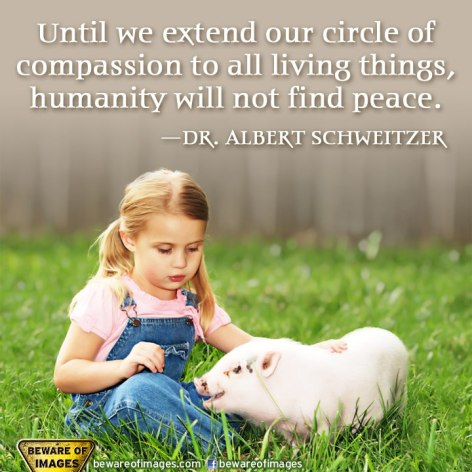 Dr. Albert Schweitzer Until We Extend Our Circle Of Compassion To All Living Things Humanity Will Not Find Peace