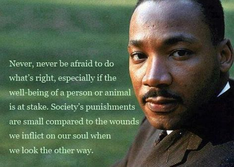 Dr. Martin Luther King Jr. Never Never Be Afraid To Do What's Right