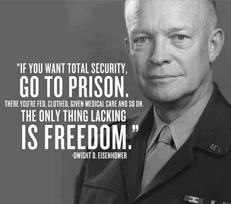 Dwight D. Eisenhower If You Want