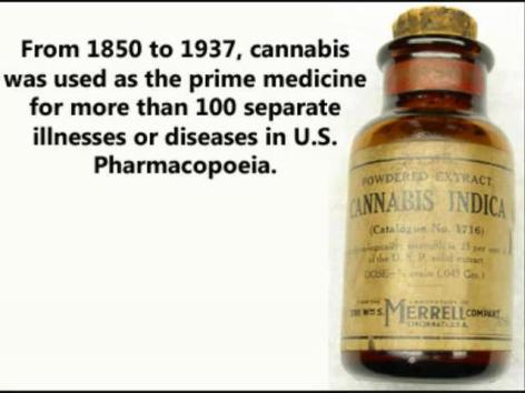 From 1850 To 1937 Cannabis Was Used