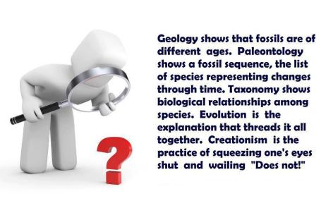 Geology Shows That Fossils Are Of
