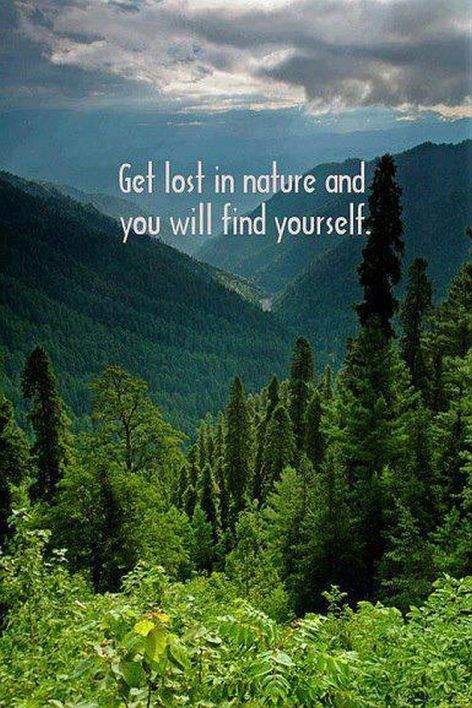 Get Lost In Nature And You Will Find Yourself