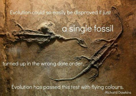 Richard Dawkins Evolution Could So Easily Be Disproved