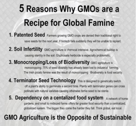 5 Reasons Why GMOs Are A Recipe For Global Famine