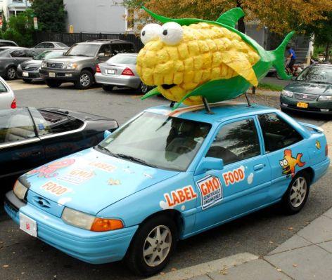 Corn Fish 2