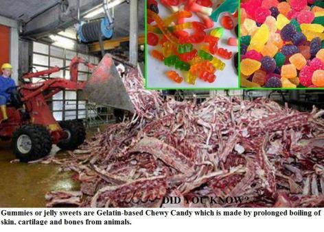 Did You Know Gummies Or Jelly Sweets Are Gelatin Based Chewy Candy Which Is Made By Prolonged Boiling Of Skin Cartilage And Bones From Animals