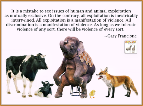 Gary Francione It Is A Mistake To
