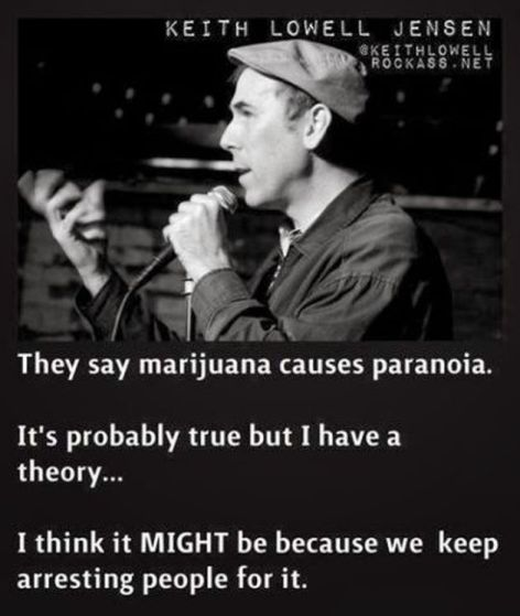 Keith Lowell Jensen They Say Marijuana Causes Paranoia