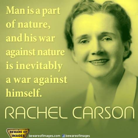 Rachel Carson Man Is A Part Of Nature And His War Against Nature Is Inevitably A War Against Himself