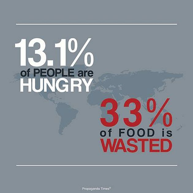 13.1 % Of People Are Hungry 33% Of Food Is Wasted