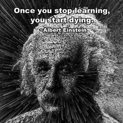 Albert Einstein Once You Stop Learning You Start Dying