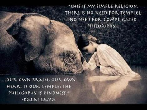 Dalai Lama This Is My Simple Religion