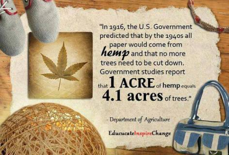 Department Of Agriculture In 1916 The US Government Predicted That By The 1940s All Paper Would Come From Hemp