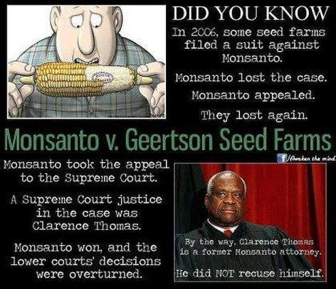 Did You Know In 2006 Some Seed Farmers Filed A Suit Against Monsanto