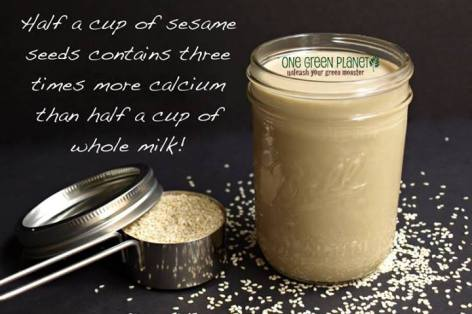 Half A Cup Of Sesame Seeds Contains Three Times More Calcium Than Half A Cup Of Whole Milk