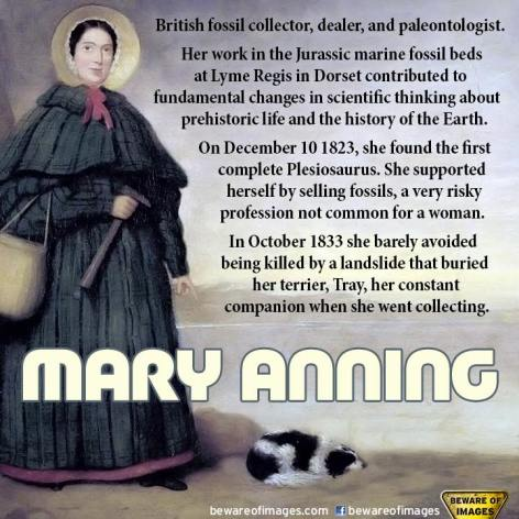 Mary Anning British Fossil Collector Dealer And Paleontologist