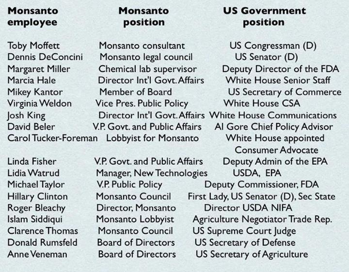 GMOs   Ha! Tea 'n' Danger   Page 3