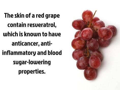 The Skin Of A Red Grape Contains Resueratrol Which Is Known To Have Anticancer Antiinflammatory And Blood Suger Lowering Properties