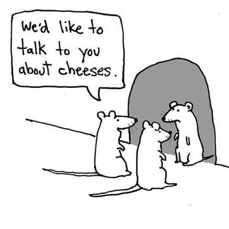 We'd Like To Talk To You About Cheeses