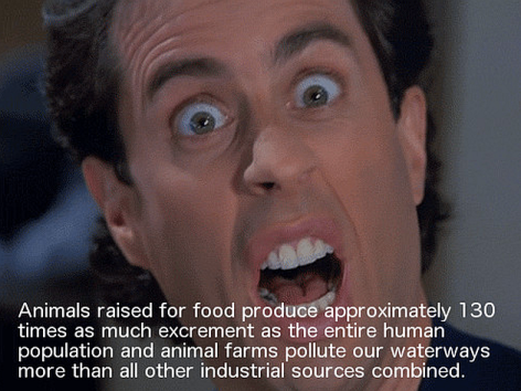 Animals Raised For Food Produce Approximately
